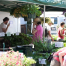 Thumbnail image for Davis Square Farmers Market Opening Day